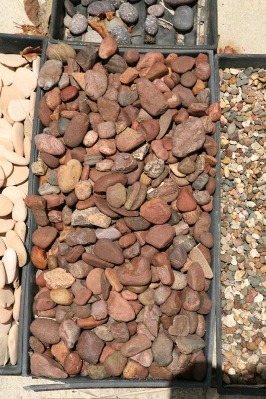 pebbles4_op_537x805.jpg