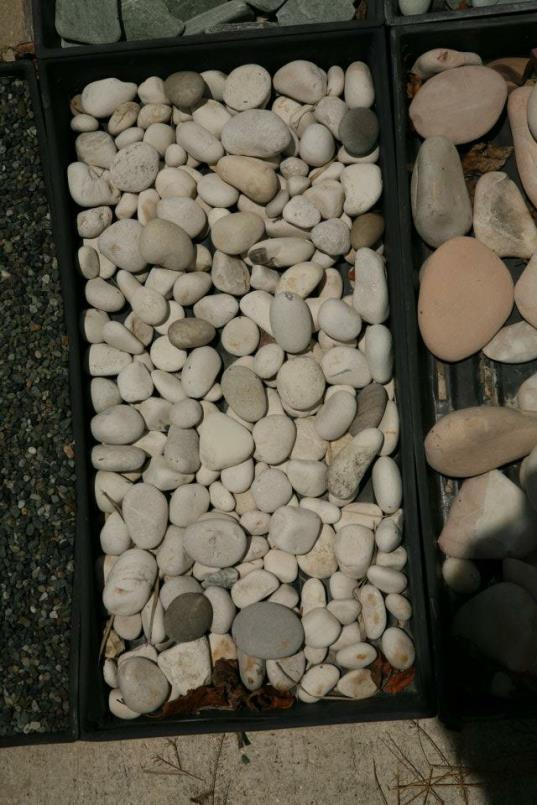 pebbles6_op_537x805.jpg