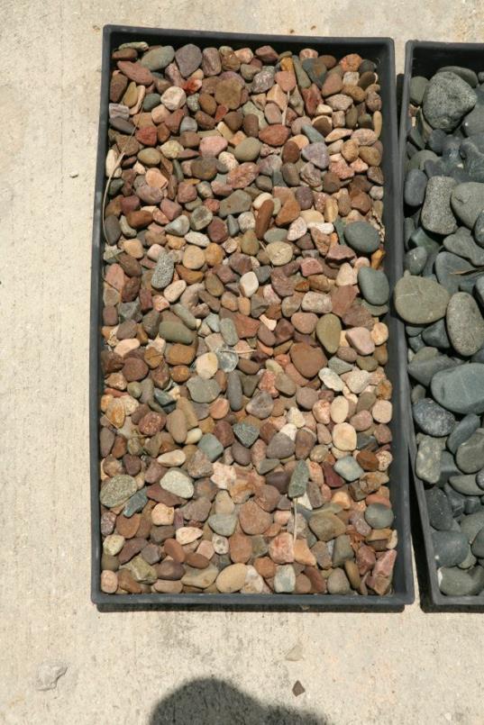 pebbles12_op_537x805.jpg