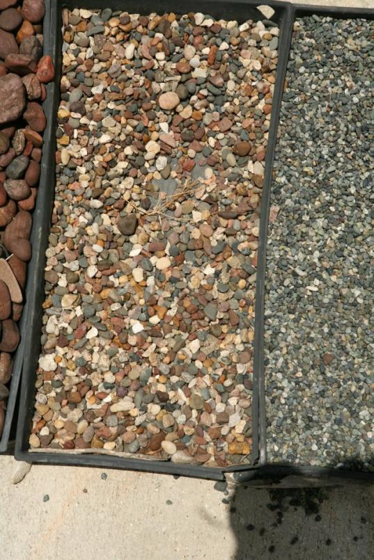 pebbles13_op_537x805.jpg
