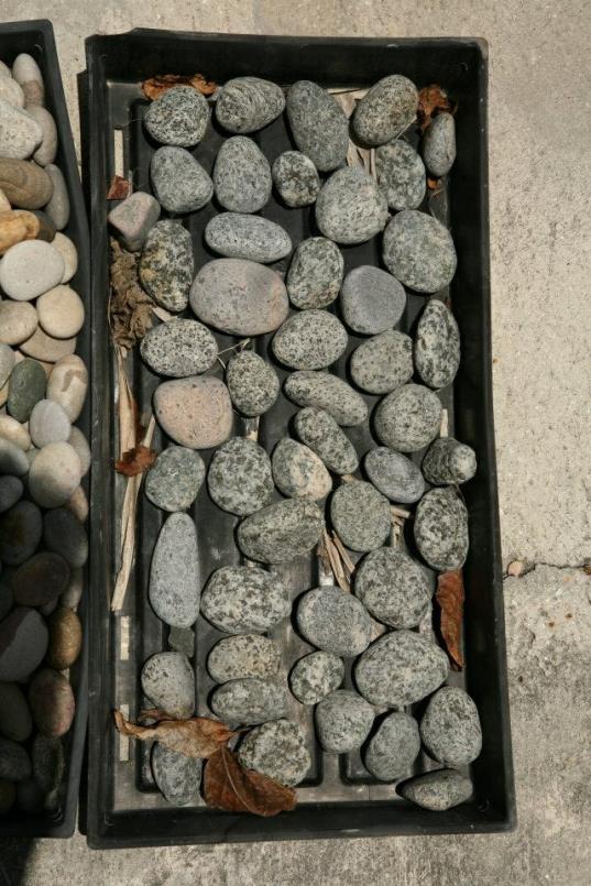 pebbles17_op_537x805.jpg