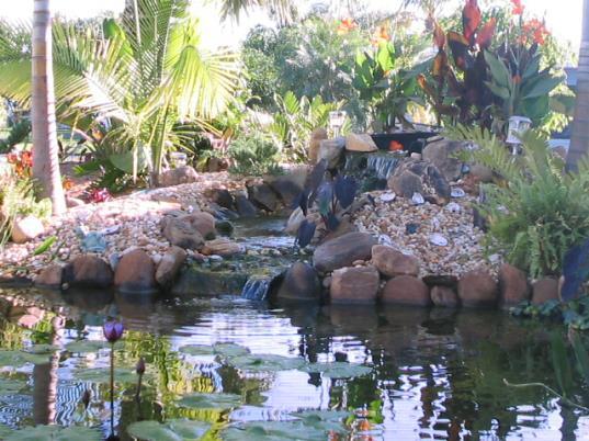 pondwaterfall20.jpg