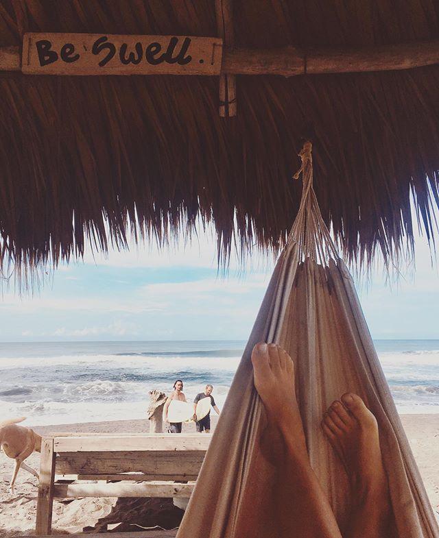 Mornings at the palapa ✨ 〰️ 〰️ #swellguatemala #swellhotel #boutiquehotel #elparedon #beachlife #surfing #hammock #goodmorning #swell #travel #perhapsyouneedalittleguatemala #voyage #traveldestination #guatemala #barefoot #boho #vacation #vitaminsea