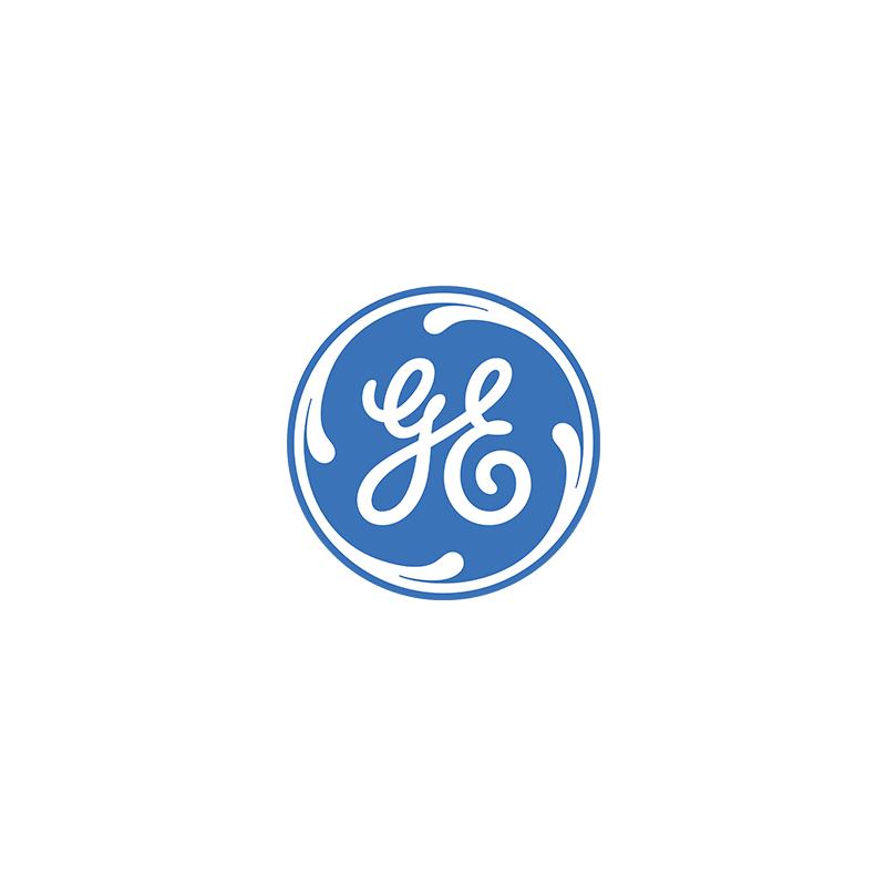 GE web logo.png