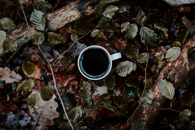 Tribe Archipelago™ — TRIBE PRESETS - THE PERFECT CUP OF COFFEE