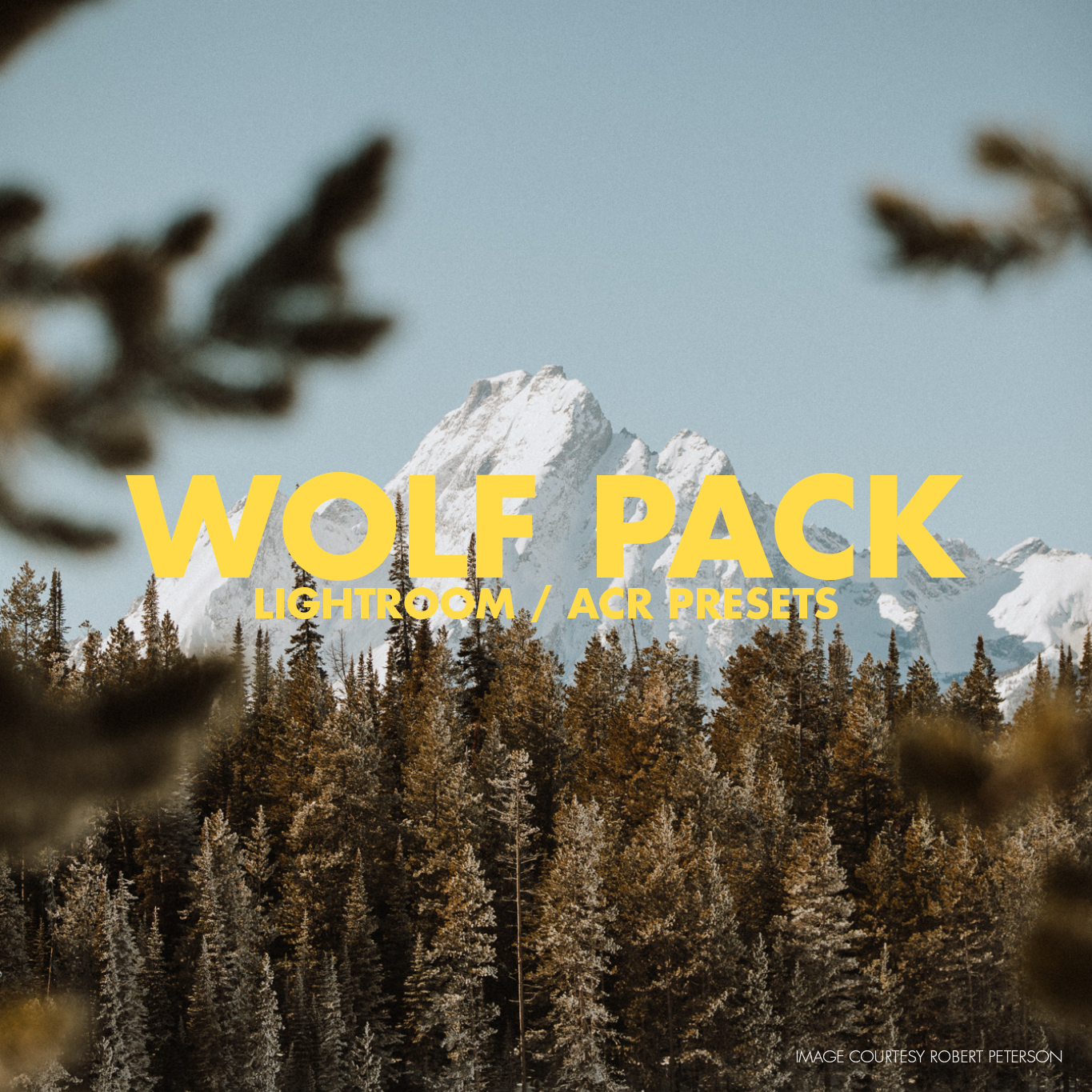 - Our Wolf Pack Presets were designed for two tribes of visual artists. The first is landscape photographers who find themselves in awe of the striking natural beauty they capture behind the lens. The second is portrait and wedding photographers who are inspired and influenced by their surrounding environment. Wolf Packs color presets are muted and moody, whilst the black and whites are some of the most beloved in our lineup. Are you ready to run with with Wolf Pack?