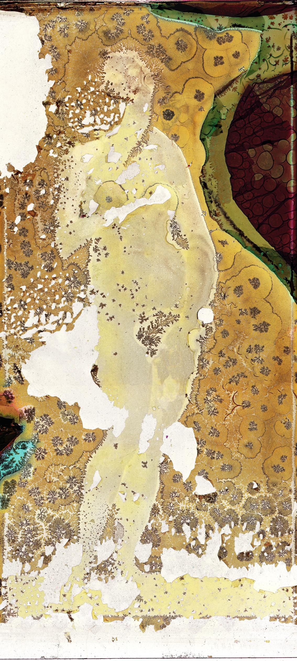 botticelli,-venus-pudica_162x360,95_web.jpg