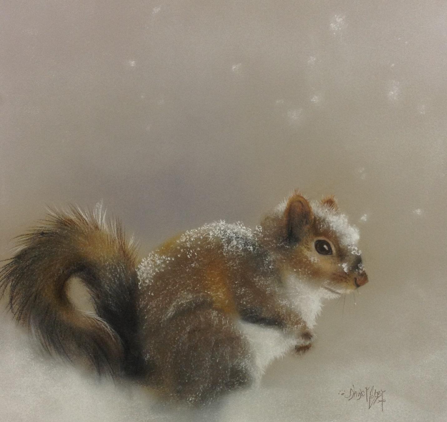 Squirrel 1.JPG