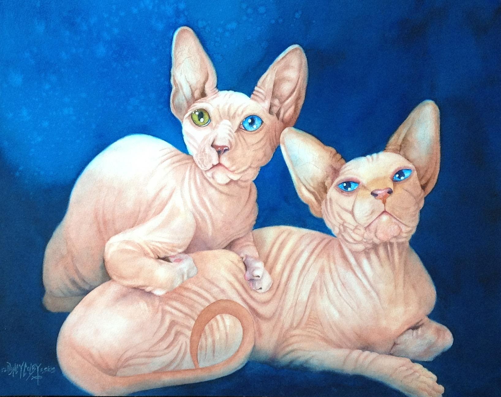 Bald-twins.JPG