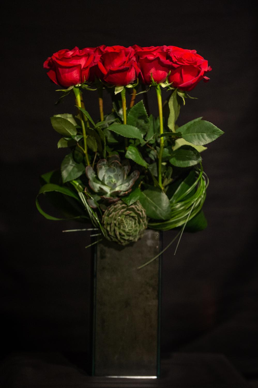 -12 parts rose-twists of grass-succulent garnish -