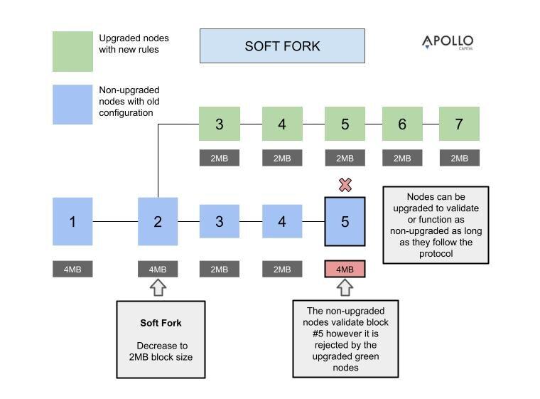 Soft Fork (3).jpg