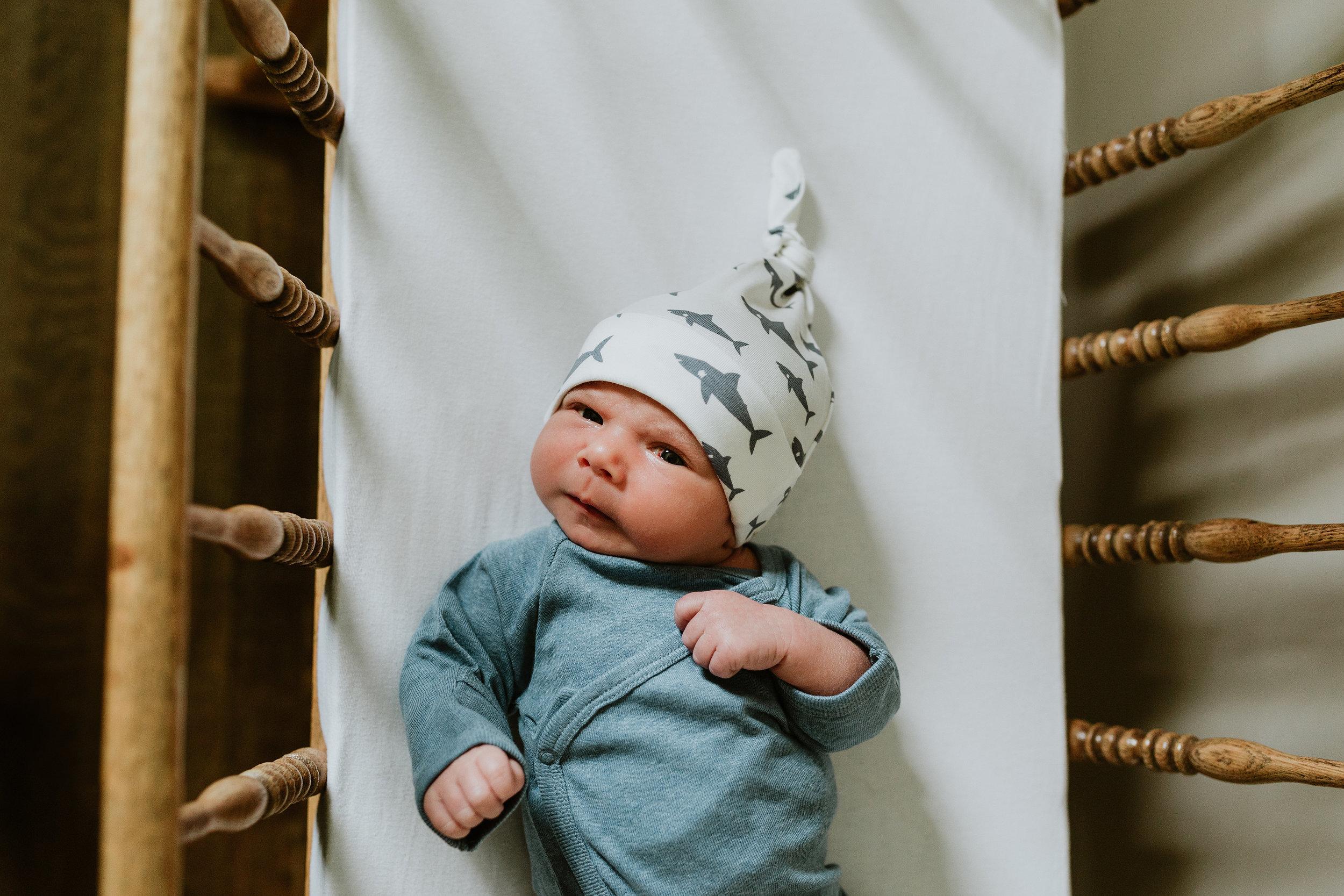 babytheodore-023.jpg