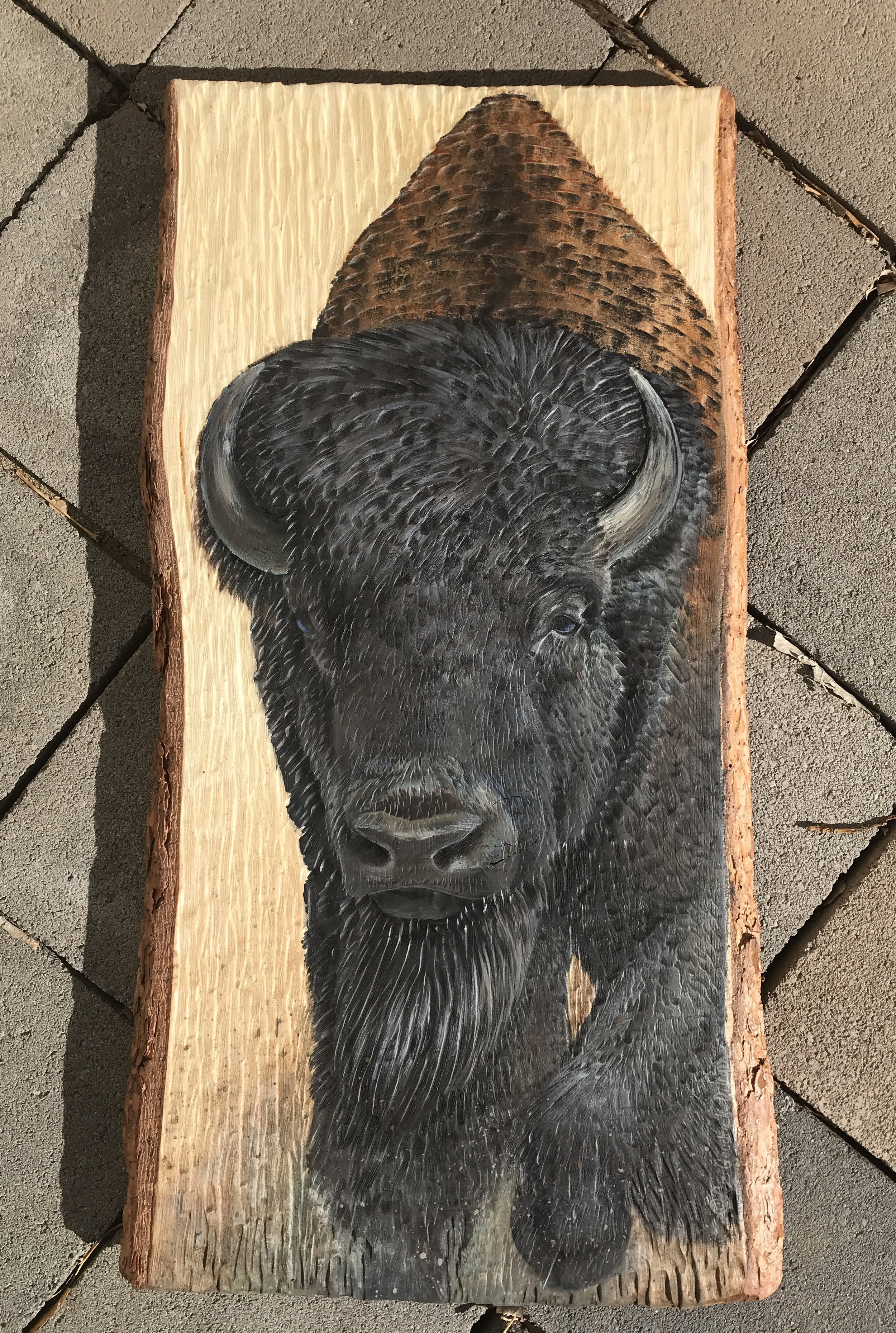 Buffalo Bull on wood - by ©Liz Goodrick-Dillon