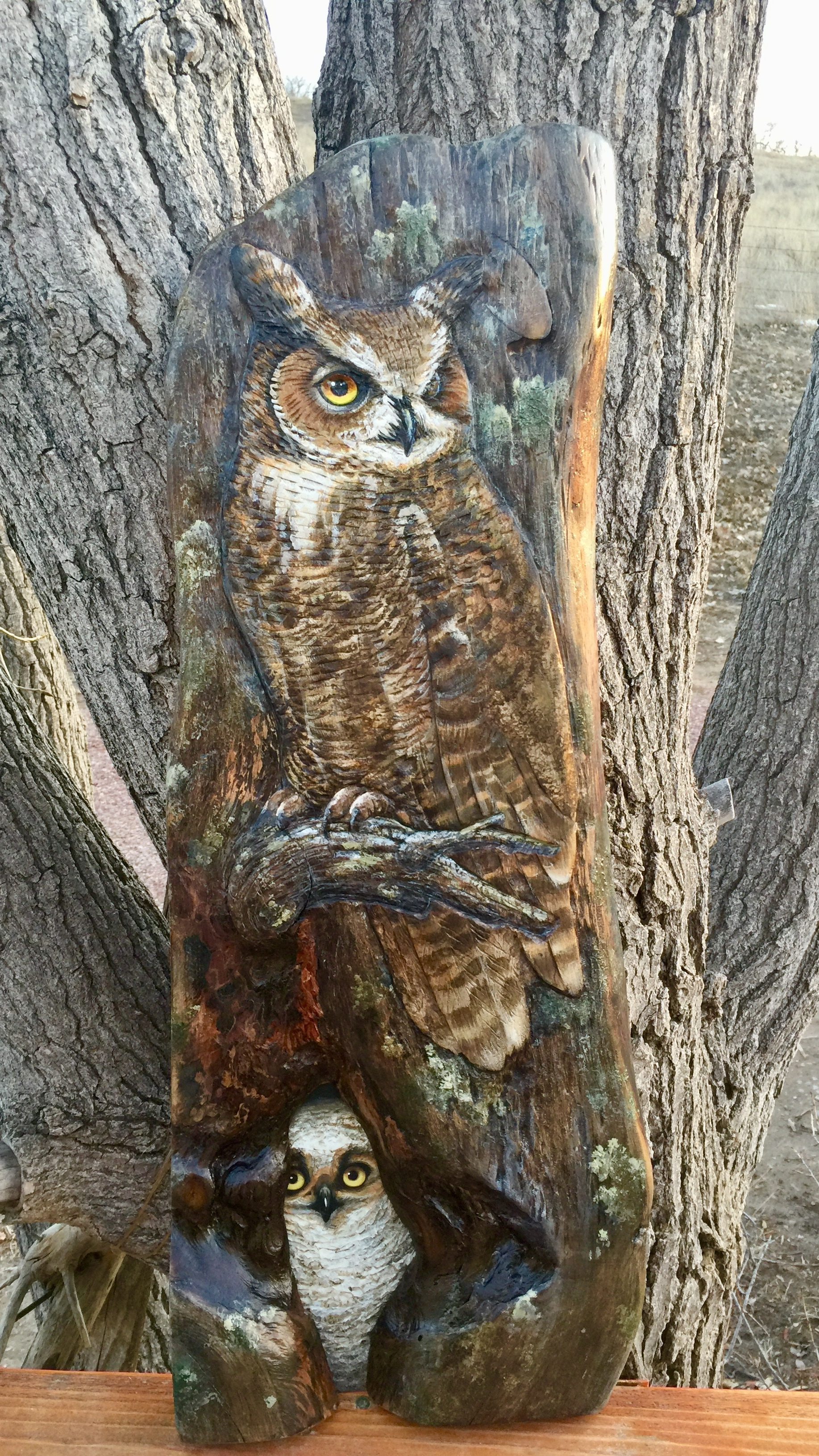 Great Horned Owl's on wood - by ©Liz Goodrick-Dillon