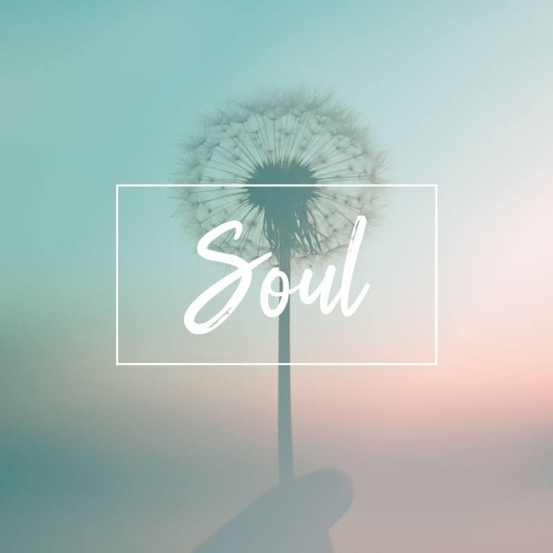 Soul Banner.jpg