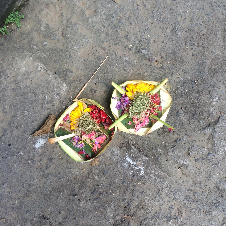 Dayka Robinson Bali Black Woman Solo International Black Woman Travel Ubud Daily Offering Balinese 2016