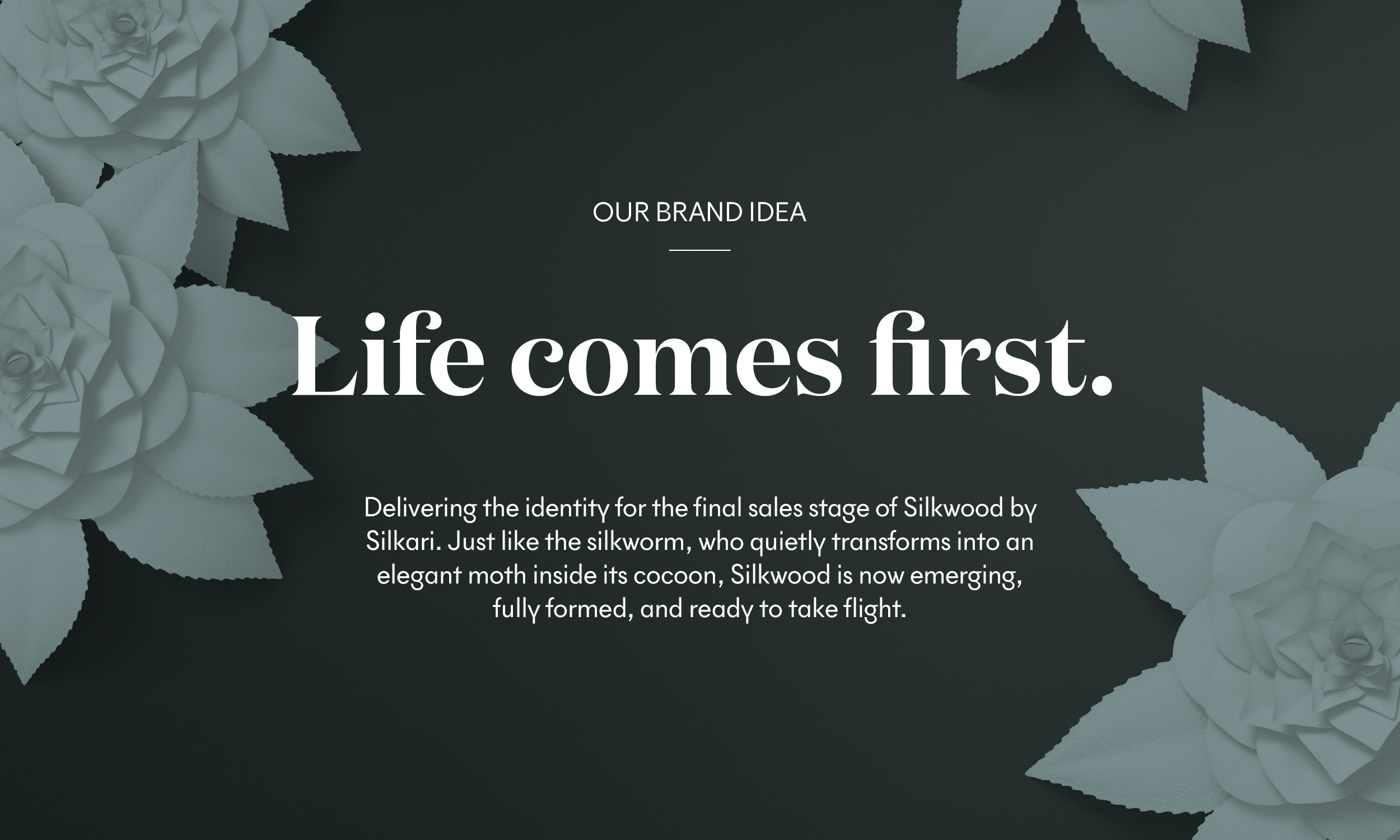 TNG-silkwood-brand-idea.jpg