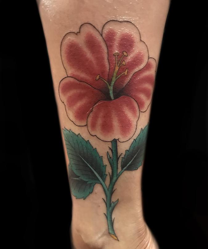 10 Hibiscus.JPG