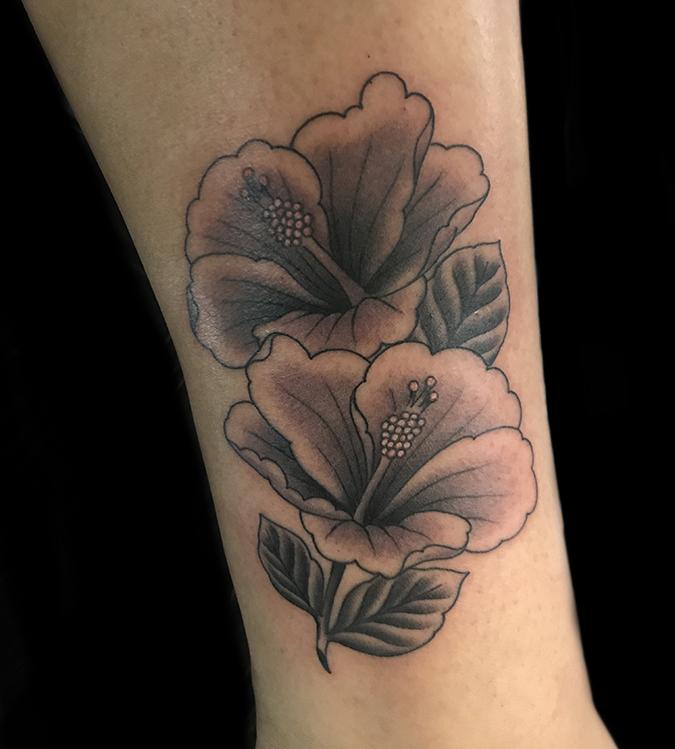 11 Hibiscus.JPG