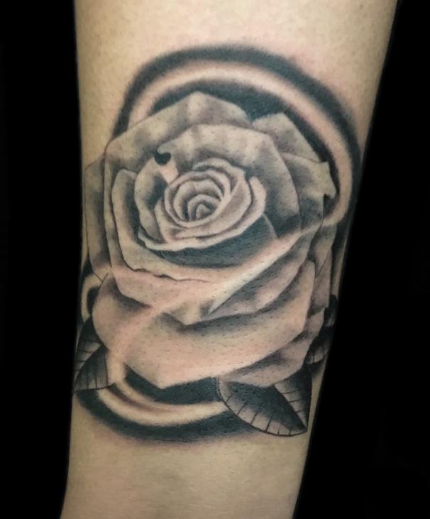 8 Rose.jpg