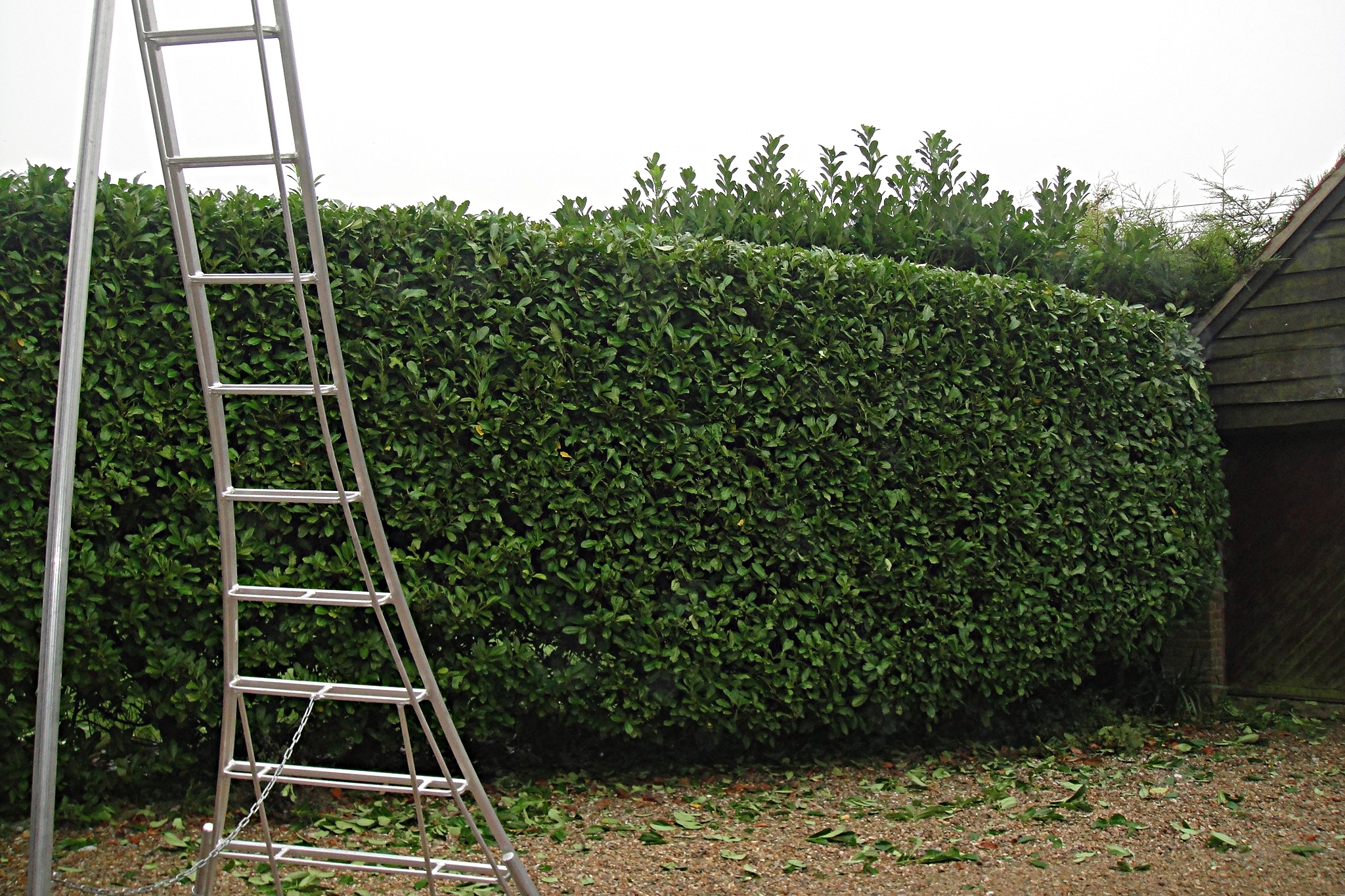 Prices Include All Equipment & Tools Needed - All our teams are fully equipped with everything needed to carry out a wide variety of garden maintenance jobs.