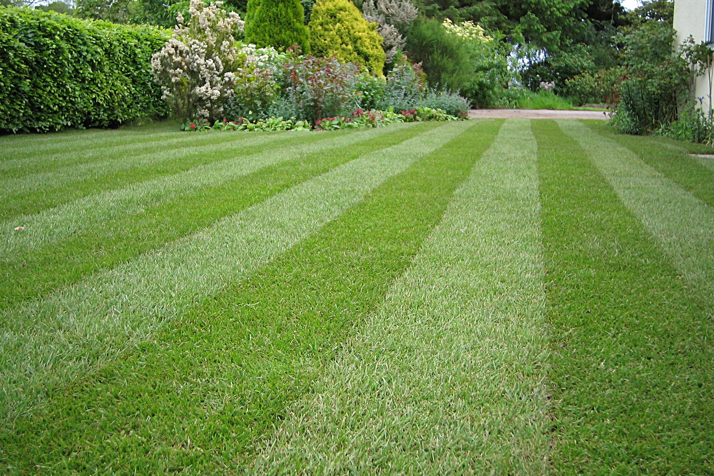 Lawn Care - From regular mowing to aeration and scarification, our garden maintenance team will carry out various procedures to keep your lawn in good condition.