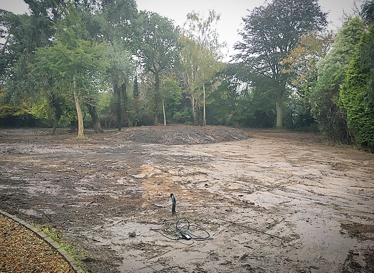 Tree Removal & Land Clearance  - We specialise in clearing areas in the most demanding of situations, whilst working alongside Ecologists and local councils.