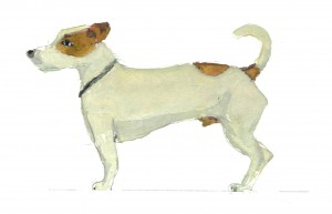 Sos1-300x193-dog-portrait.jpg