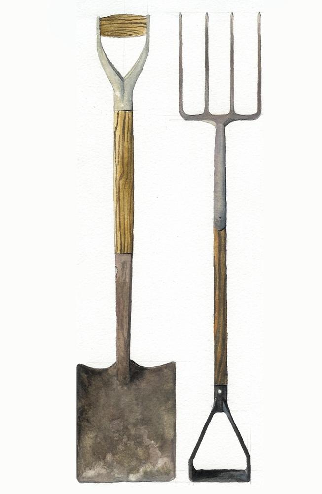 Spade and fork.jpg