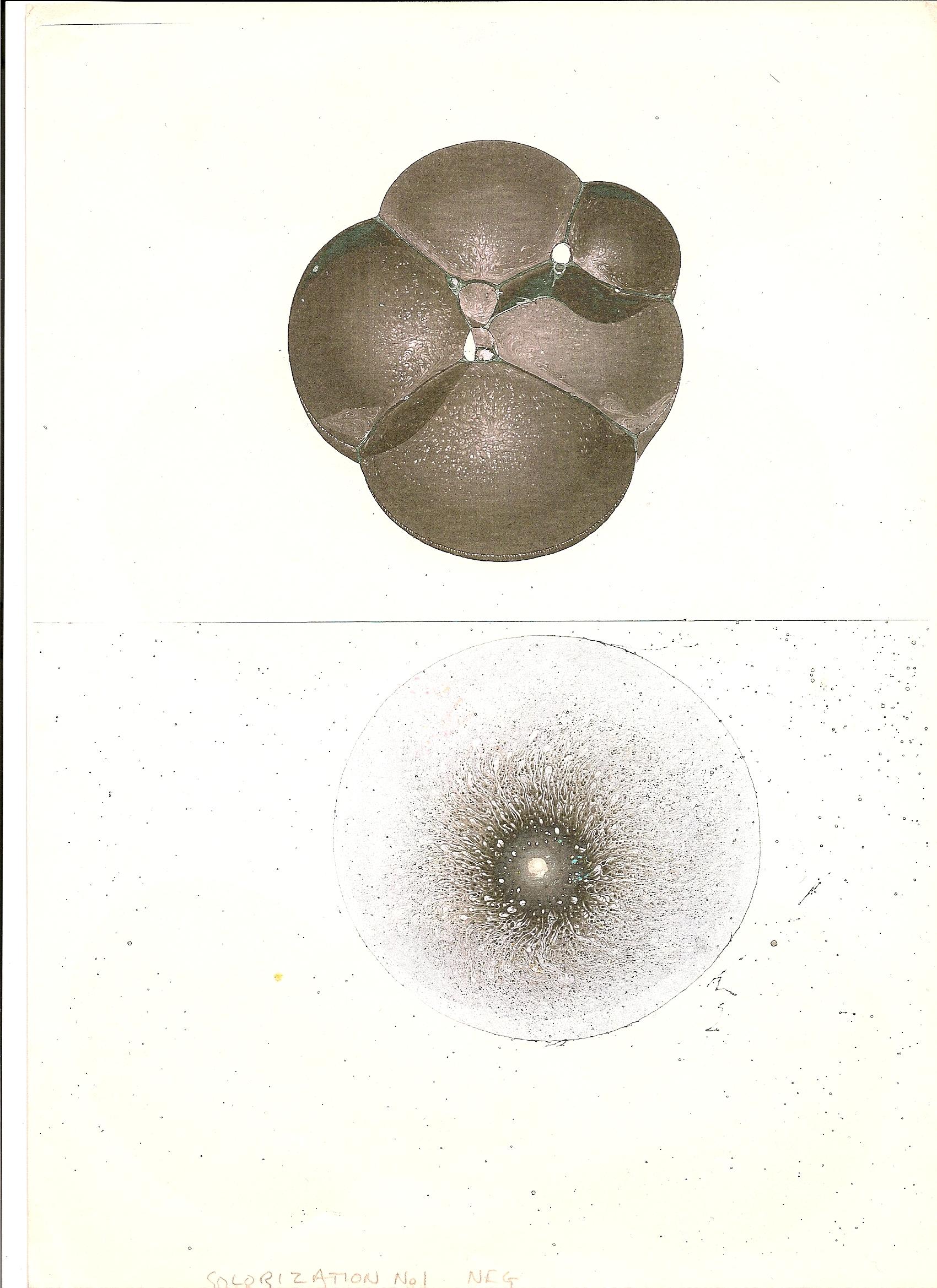 Cluster& Nipple.jpg