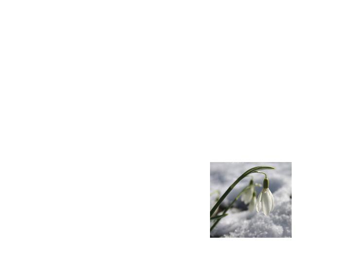Slide76.jpg