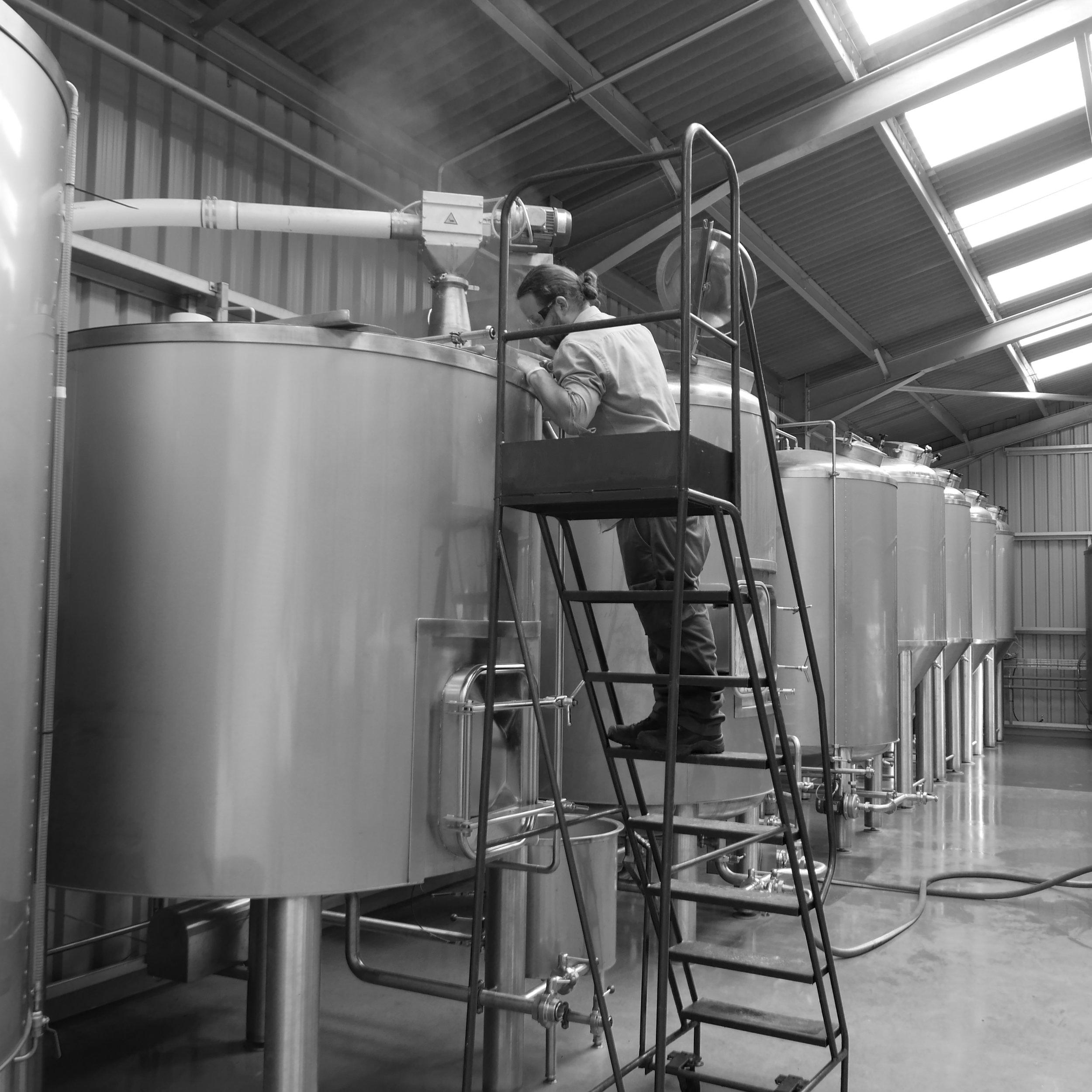 breweryL1660391.JPG