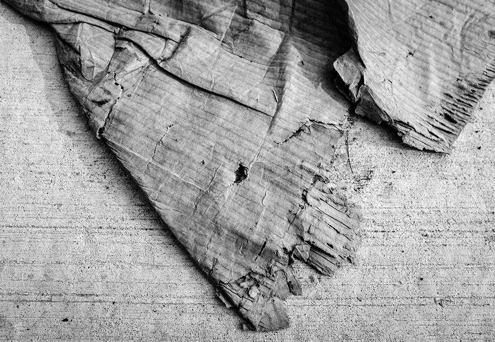 Cardboard&Concrete-Aug19-18B.png