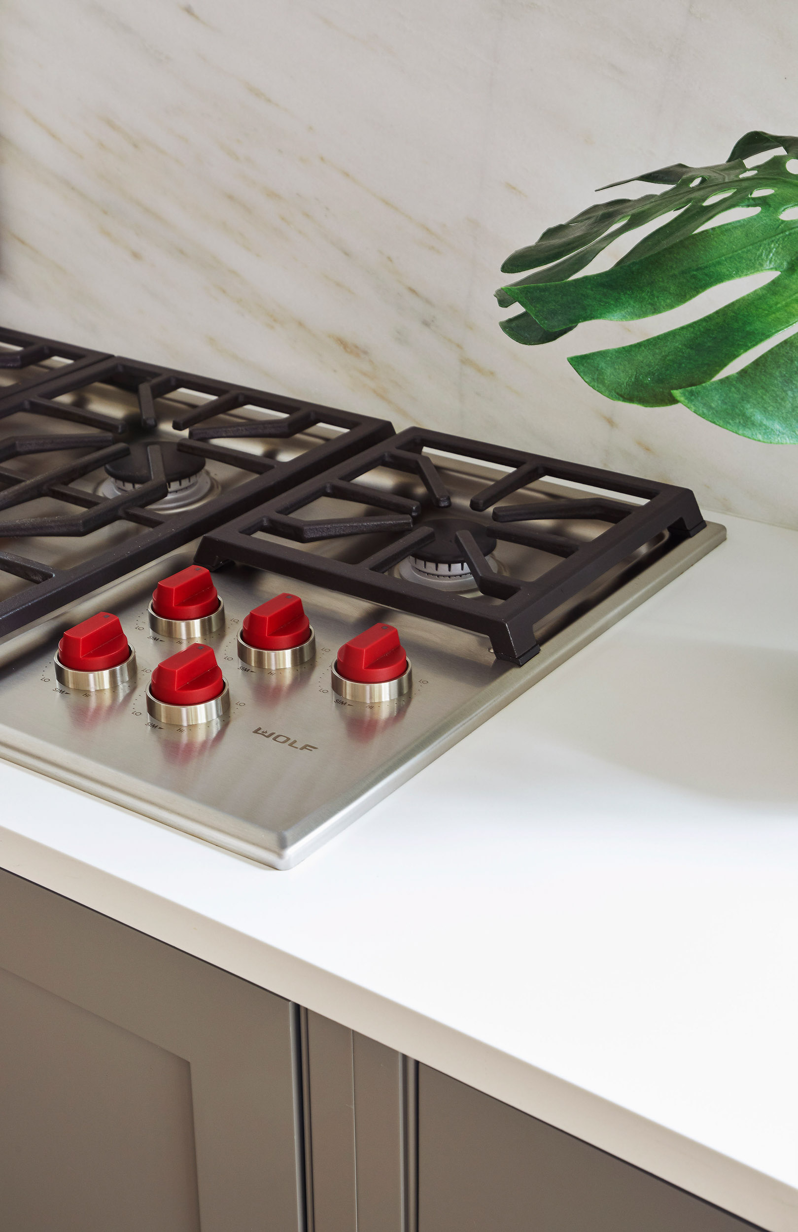 Kitchen Remodel with Sub-Zero Wolf Appliances