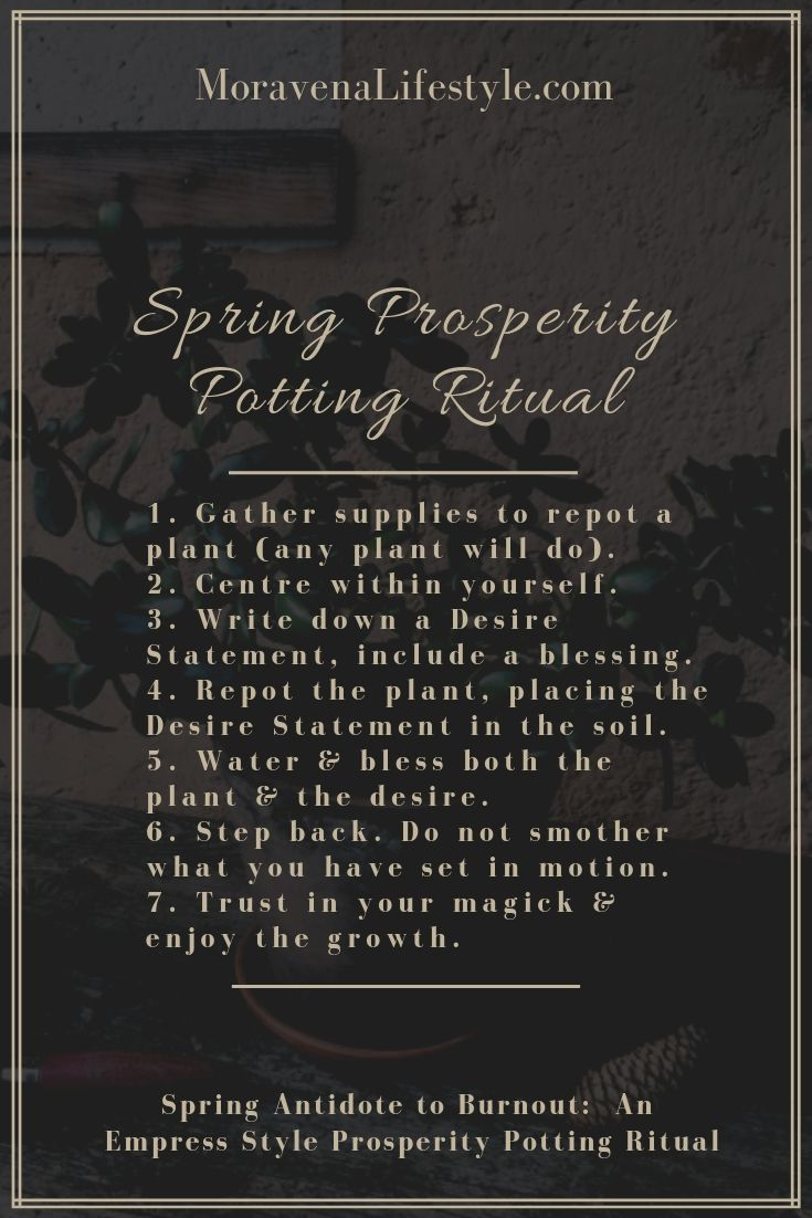 Prosperity_Potting_Ritual_Steps.Blog.jpg