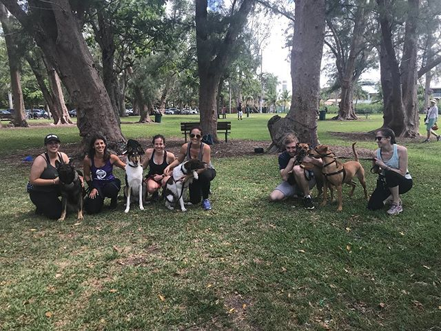 Because 🐶 Dog Life = Better Life 🐾 we LOVE BarkFit 🐾 Miami's only workout with your dog ✌️💜🐕