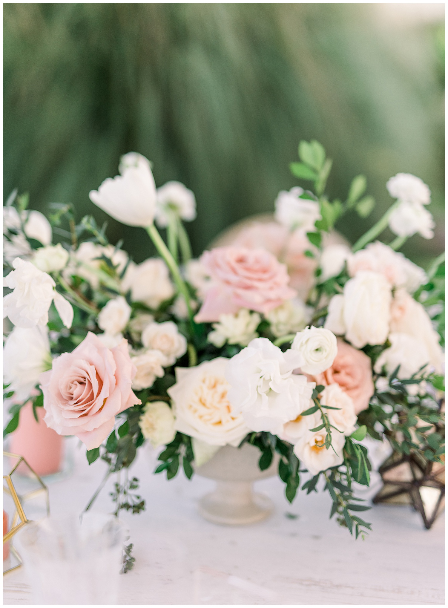 Janine_Licare_Photography_San_Francisco_Wedding_Photographer_Carneros_Tyge_Williams_Sonoma_Napa_0134.jpg