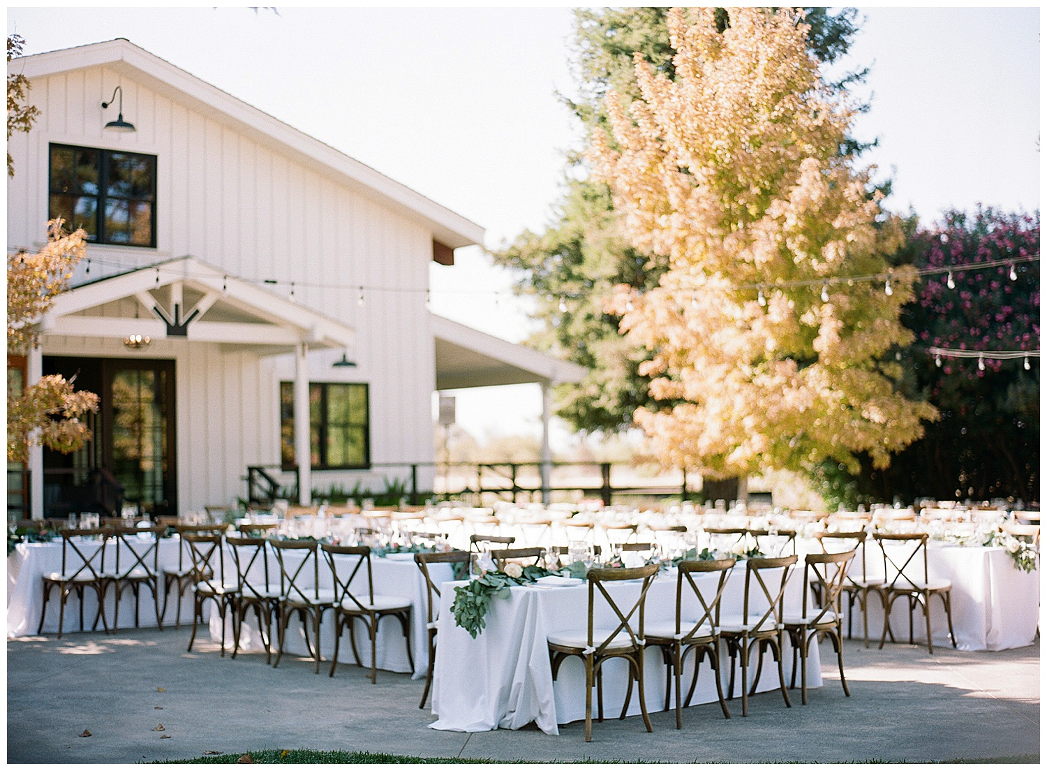 Janine_Licare_Photography_San_Francisco_Wedding_Photographer_Carneros_Tyge_Williams_Sonoma_Napa_0231.jpg