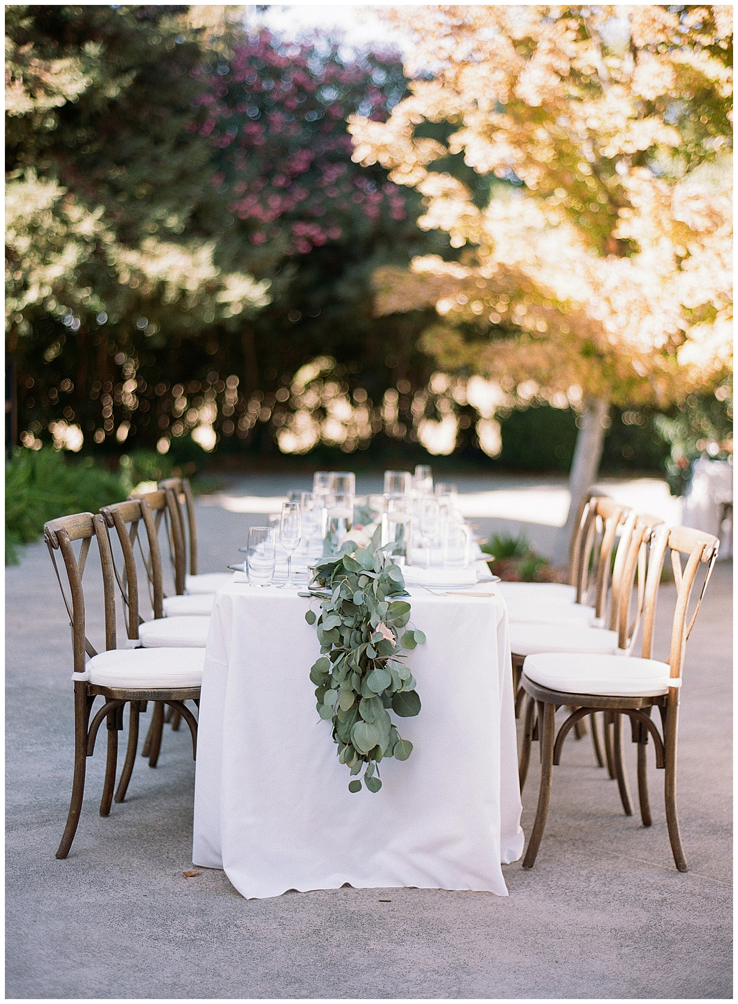 Janine_Licare_Photography_San_Francisco_Wedding_Photographer_Carneros_Tyge_Williams_Sonoma_Napa_0239.jpg