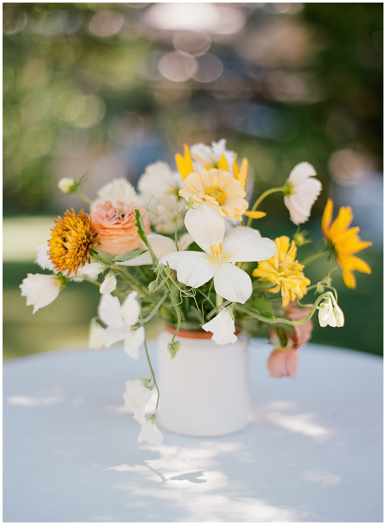 Janine_Licare_Photography_San_Francisco_Wedding_Photographer_Lake_Tahoe_West_Shore_Cafe_Colorful_Summer_0029.jpg
