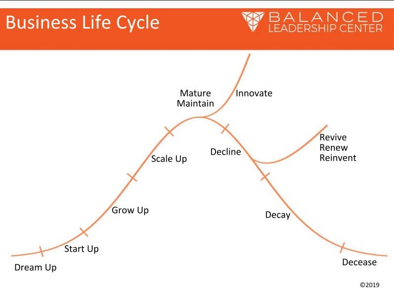 The Business Life Cycle.PDF