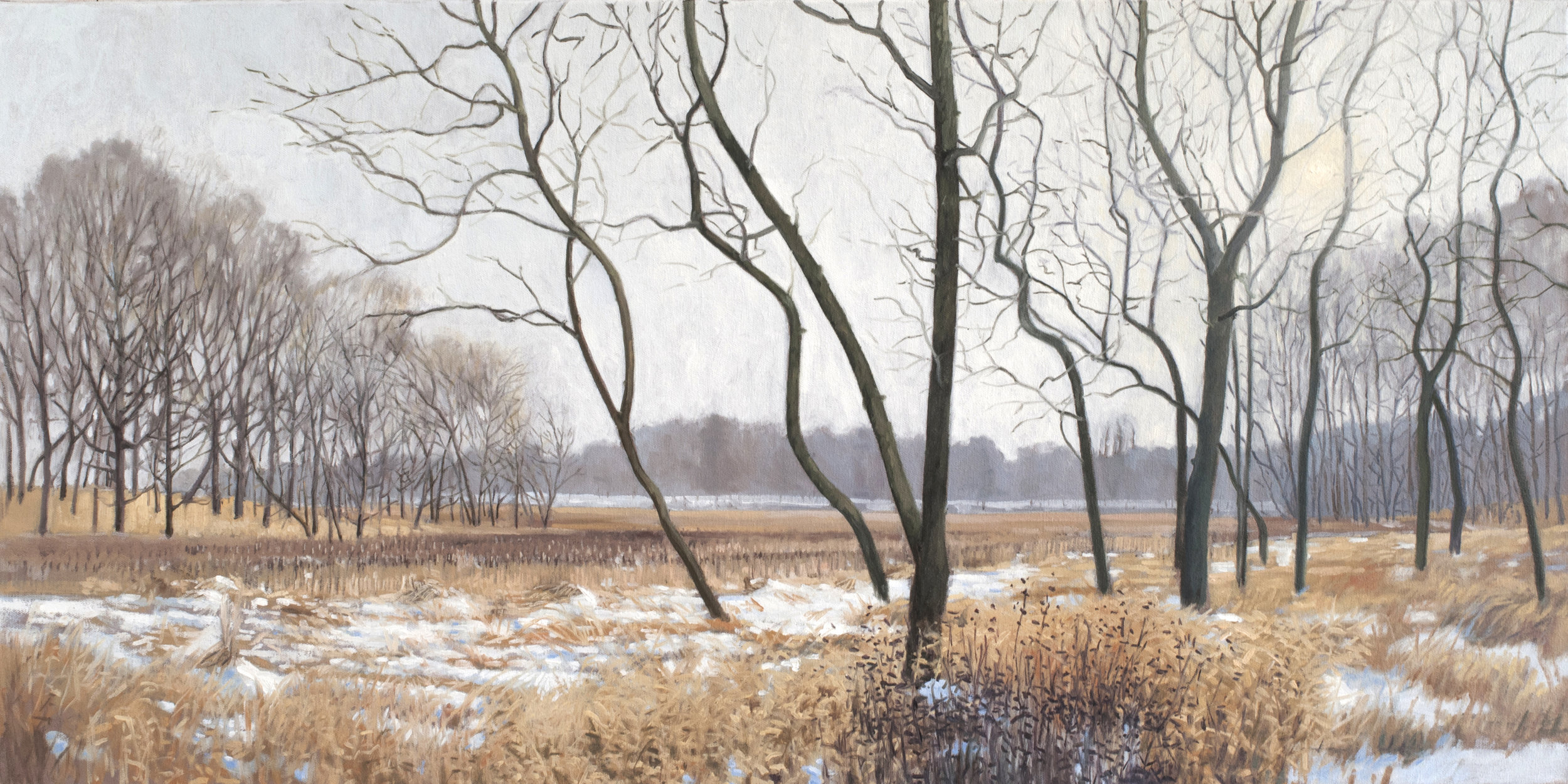 "December 31 Lincoln Marsh, 18x36""  2013 (sold)"