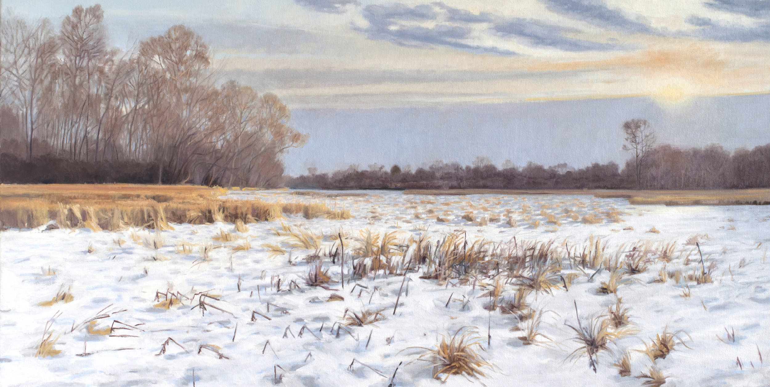 "Jan 13 Lincoln Marsh 18x36"" 2014 (sold)"