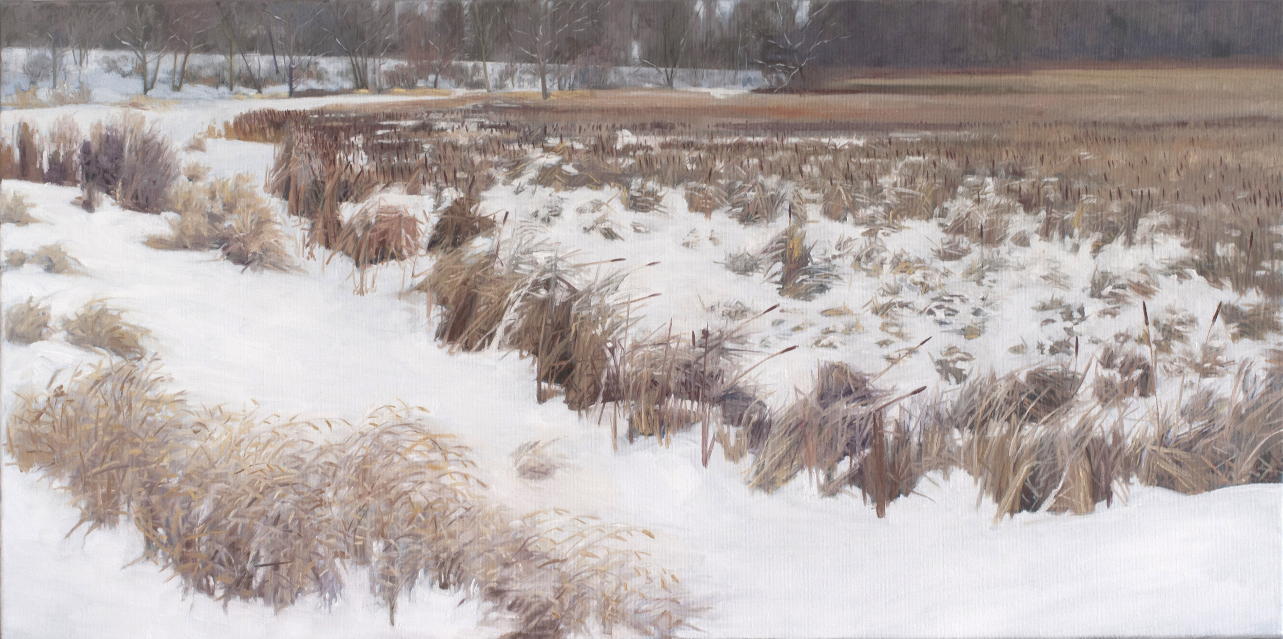 "Jan 26 Lincoln Marsh 18x36"" 2014 (sold)"