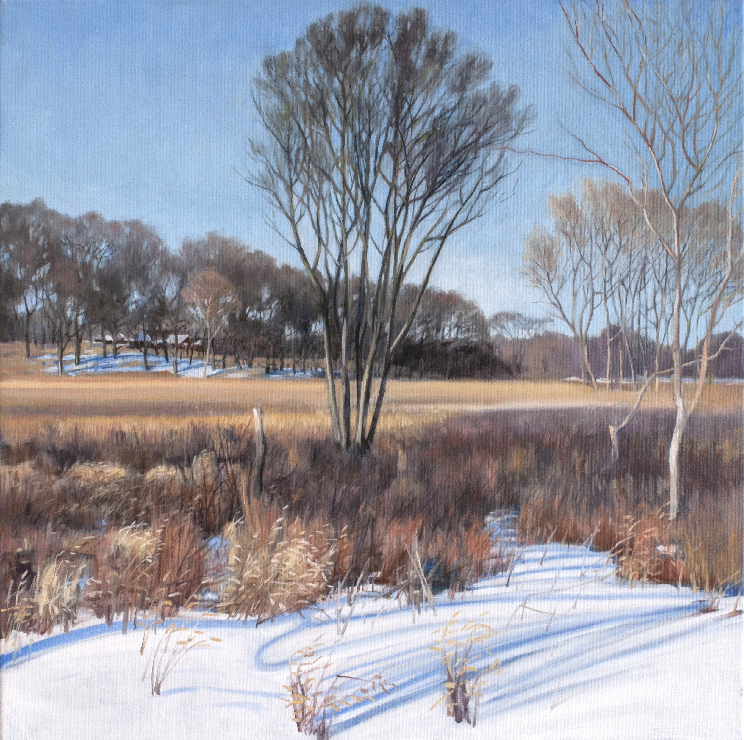"Jan 29 Lincoln Marsh 20x20"" 2014 (sold)"