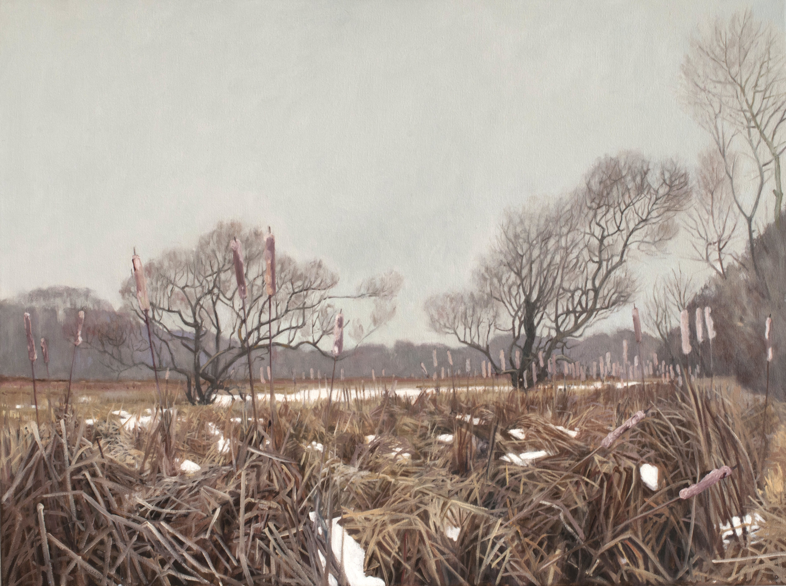 "Jan 31 Lincoln Marsh 18x24"" 2014"