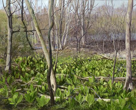 "April 12 Skunk Cabbage Red Oak Nature Preserve  16x20""  2017"