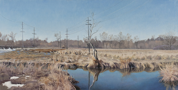 "March 17 Lincoln Marsh 18x36"" 2014 (sold)"
