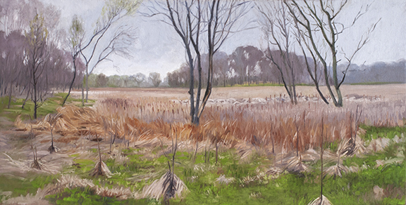 "April 30 Lincoln Marsh 10x20"" 2014"