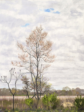 "May 5 Lincoln Marsh 24x18"" 2014"